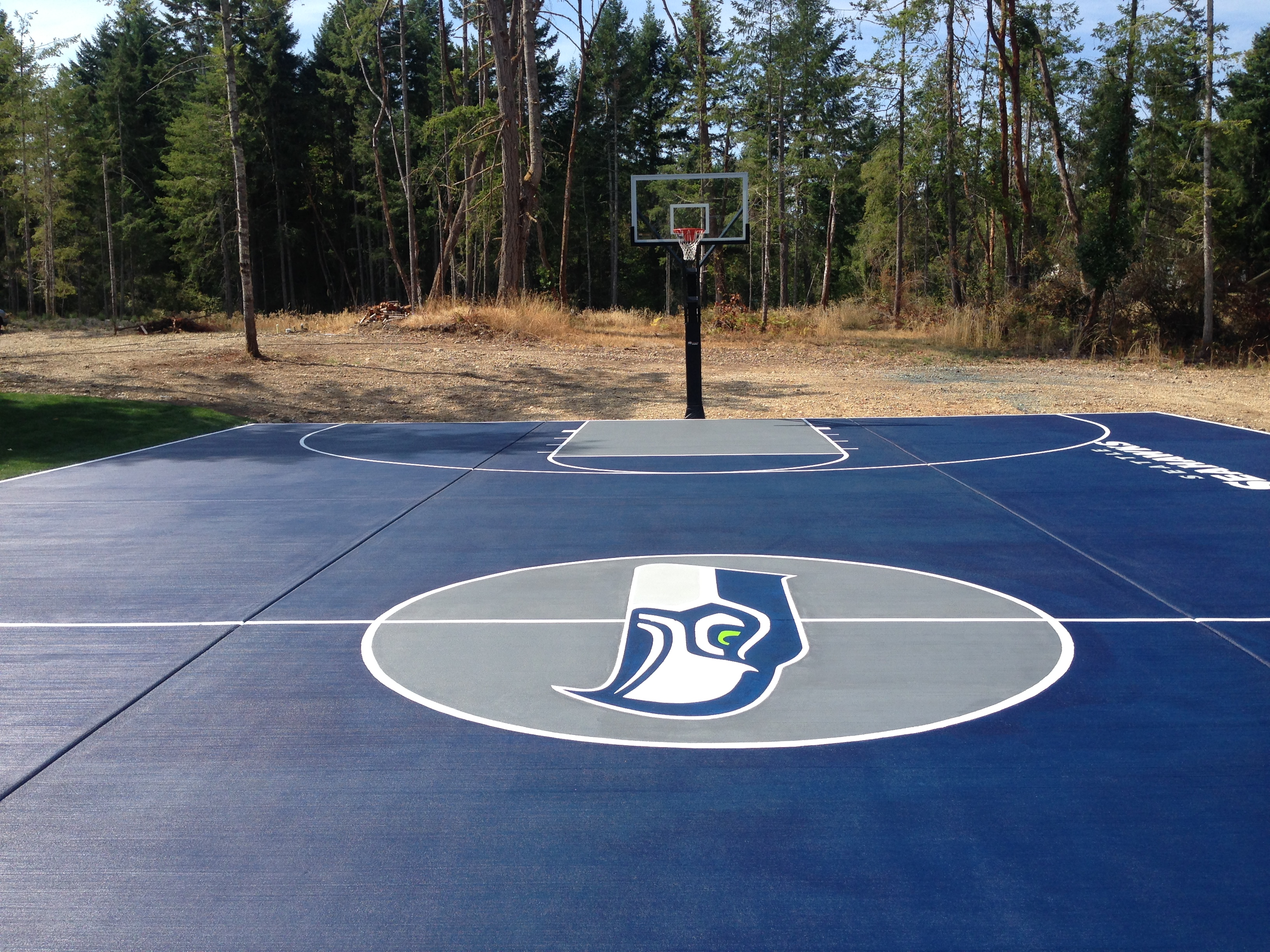 Seahawks Fan Stains Personal Basketball Court